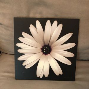 Other - White Daisy - Wall Art 🖼 Picture